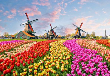 Holidays to the Netherlands with Cassidy Travel